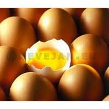 Eieren bruin Nº3 Large 90st
