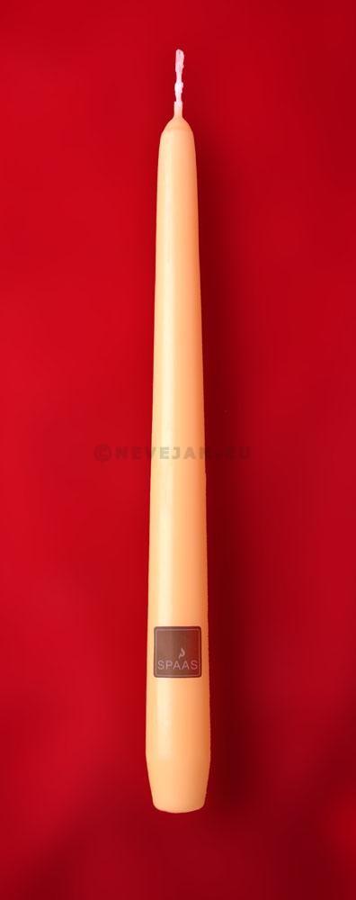 Bougies ivoire Spaas 25cm 100pc Festilux