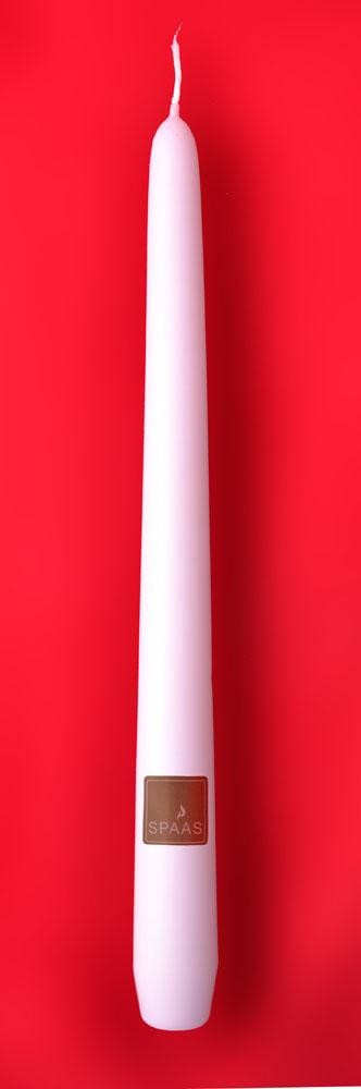 Bougies flambeaux blanc Spaas 25cm 100pc Festilux