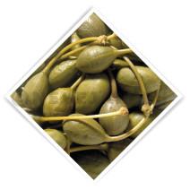 Alcaparron (pommes de capres) 3.8kg 5L De Notekraker