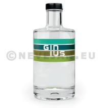 Gin Ginius 50cl 43% Belgique