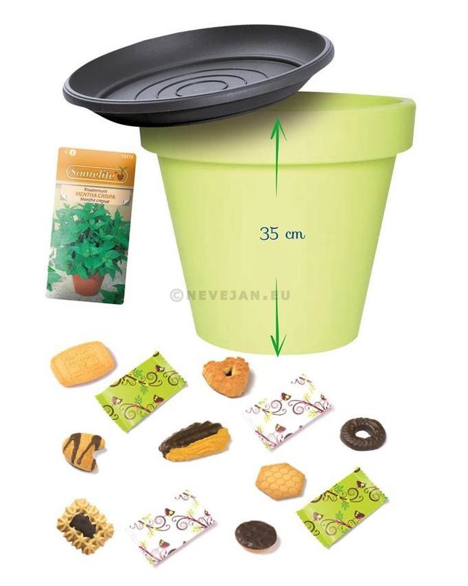 Elite Coffee Biscuits Spring Garden Mix 360pcs + 40pcs For Free