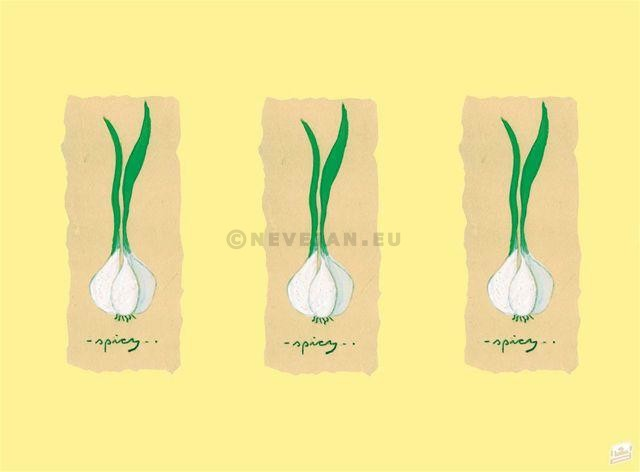 Paper Placemats Garlic 31x42cm 500pcs Lotus Professional