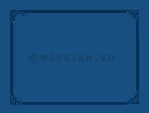 Paper Placemats midnight blue 31x42cm 500pcs Lotus Professional