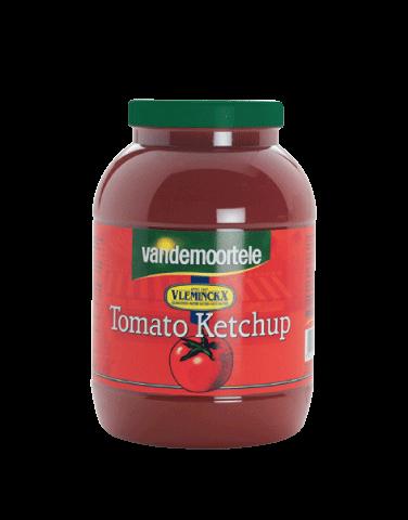 Ketchup 3L PET Vleminckx