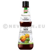 Knorr Intense Flavours Citrus Fresh 400ml Professional