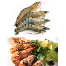 Gamba 6/8 1kg Blacktiger HOSO giant shrimp with head