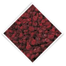 Semi Dried Cranberries 2kg De Notekraker