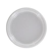 Plastic Dinner Plate white 22cm 8.8inch 100pcs