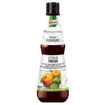 Knorr Intense Flavours Citrus Fresh 400ml Professional